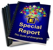 GoE Special Reports - Writing Guide and Blank Template