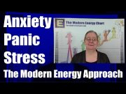 Anxiety, Panic, Fear, Stress - The Modern Energy Perspective