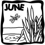The GoE June 2009 Newsletter