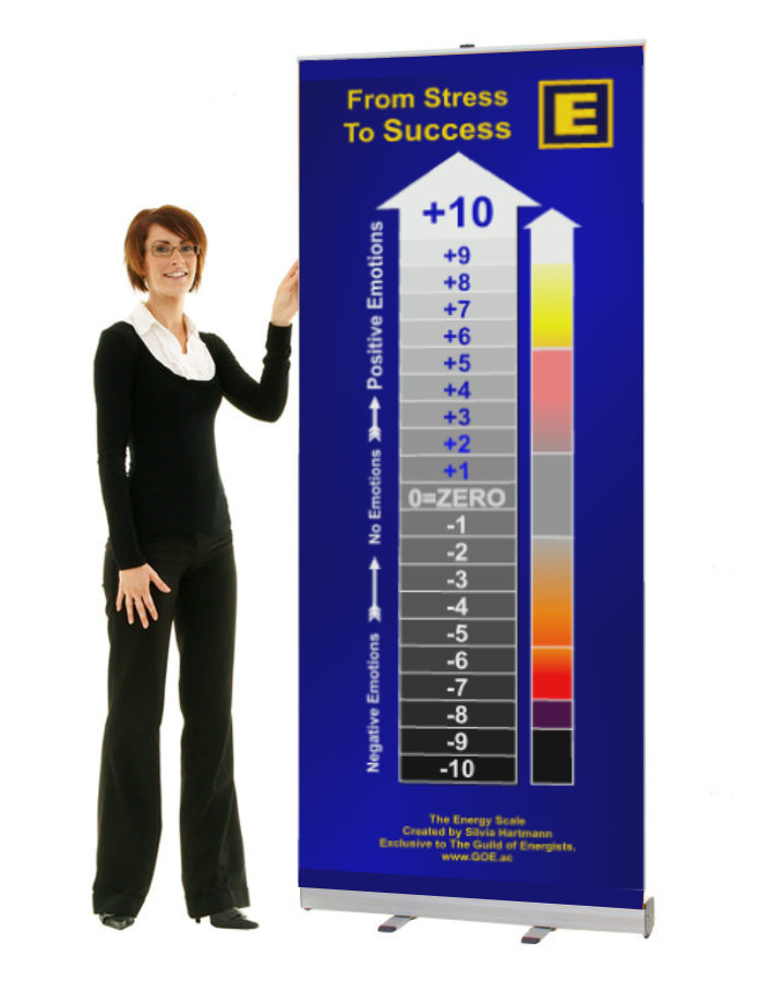 MSM Stress Management Pull Up Banner - SUE Scale