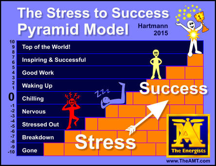 Stress to Success with MSM