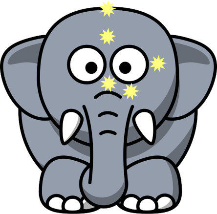 The Elephant! - Energy EFT Tapping In Schools