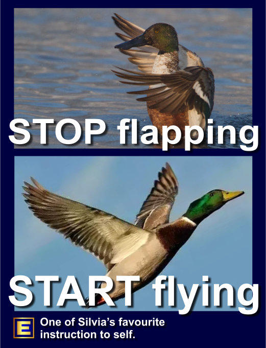 Silvia Hartmann meme stop flapping start flying